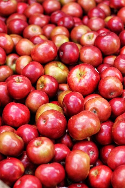 apples-blur-close-up-1453713.jpg