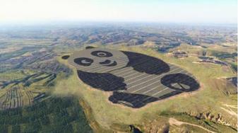 Zonnepark panda
