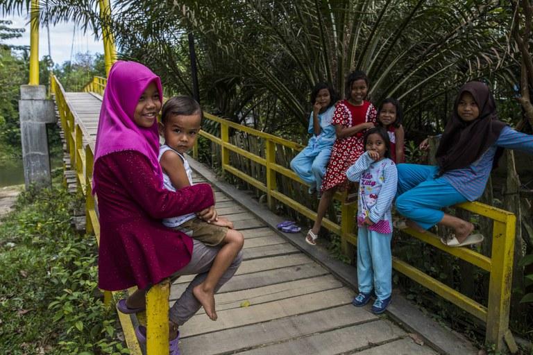 Dorp omringd door palmolieplantages in Indonesie