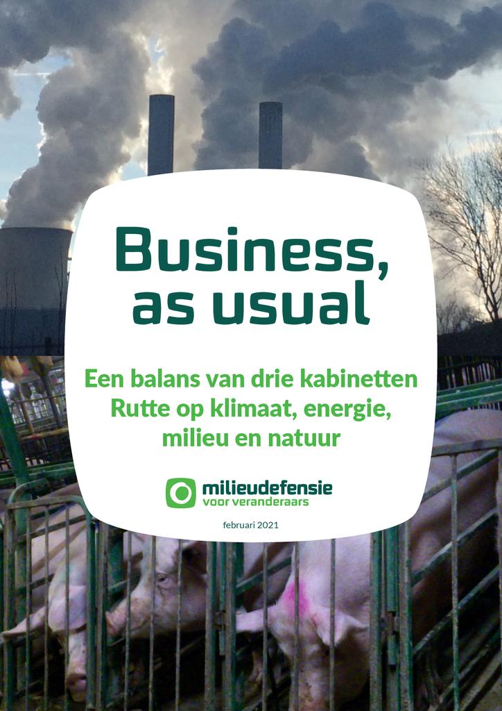 Voorbeeld van de eerste pagina van publicatie 'Rapport: Business as Usual'