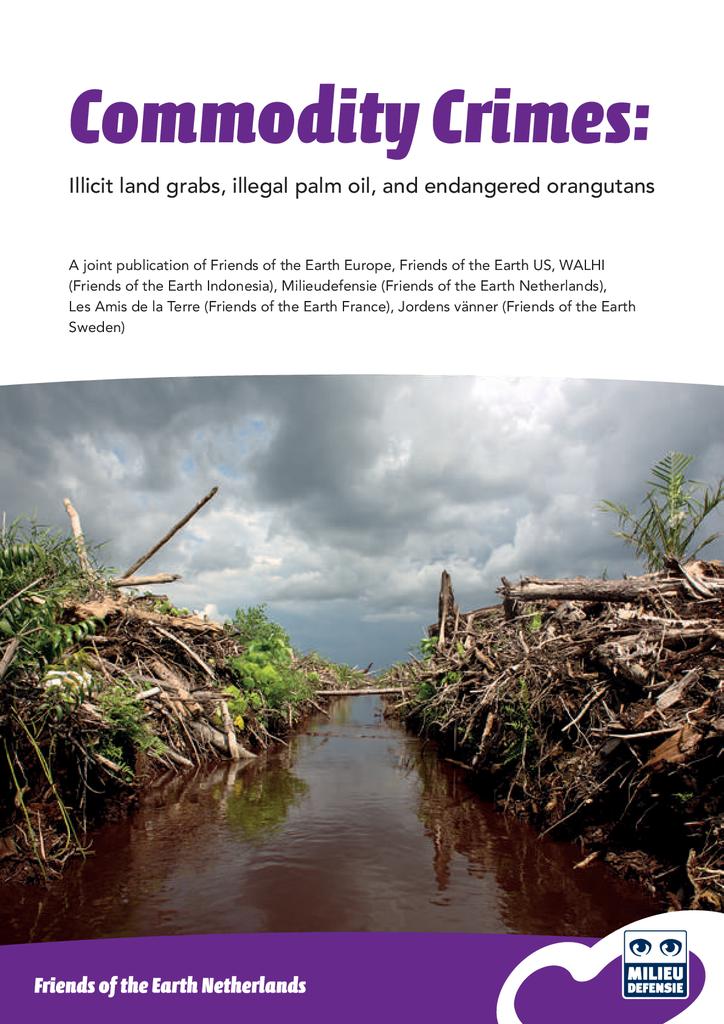 Voorbeeld van de eerste pagina van publicatie 'Wat er mis is met palmoliebedrijf Bumitama'