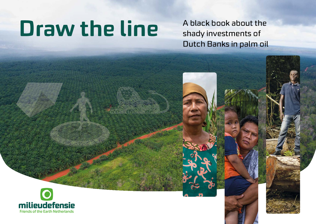 Voorbeeld van de eerste pagina van publicatie 'Draw The Line: A black book about the shady investments of Dutch Banks into palm oil (English)'