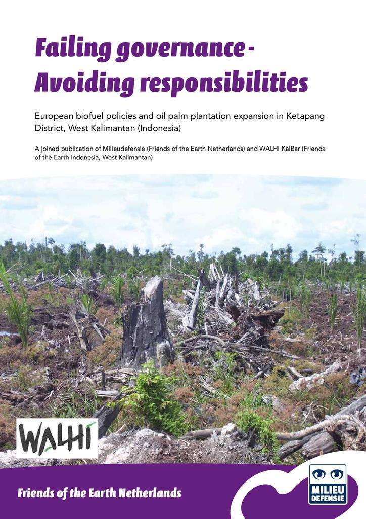 Voorbeeld van de eerste pagina van publicatie 'Failing Governance - Avoiding Responsibilities'
