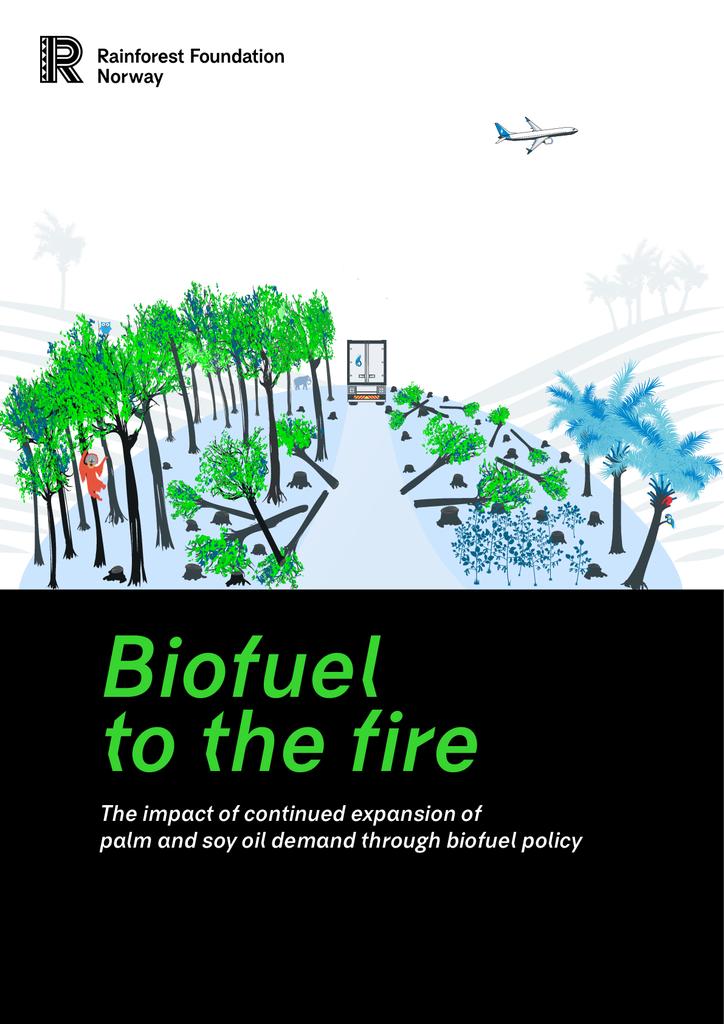 Voorbeeld van de eerste pagina van publicatie 'Rapport: de schadelijke gevolgen van palmolie en sojateelt voor biobrandstoffen'