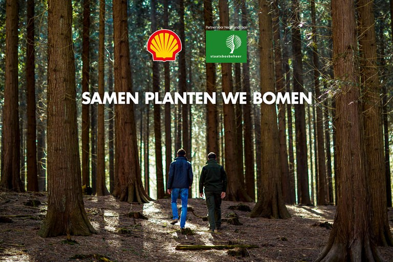 samenwerking-bomen-planten.jpg