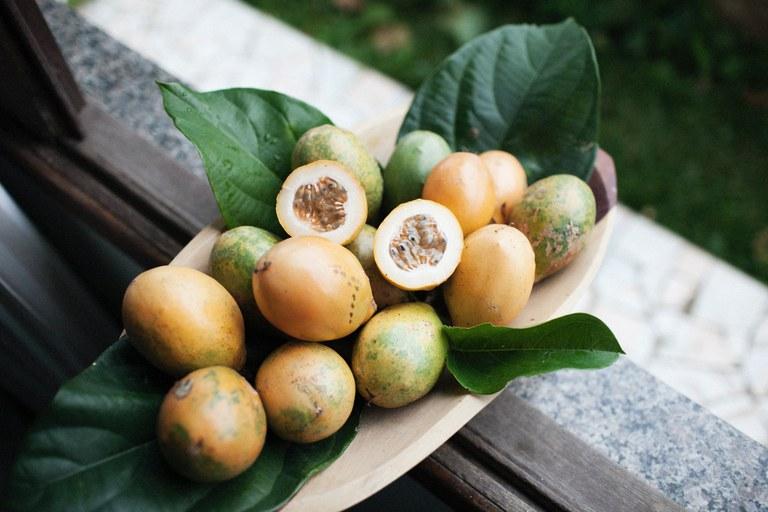 Tropisch fruit.jpg