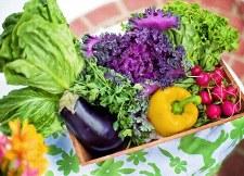 Verse groenten 225x162.jpg